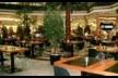 City Brasserie Resim 2