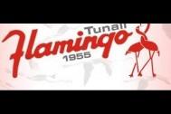 Flamingo Pastanesi