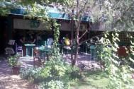 Natura Kafe